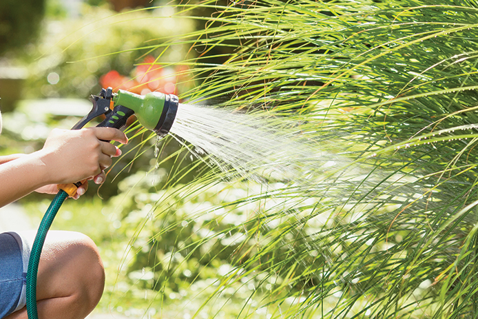 Garden Hose and Nozzle